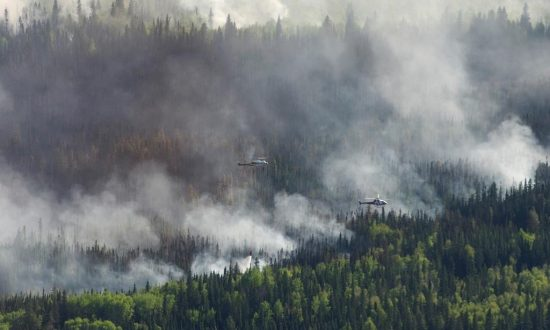 'Like Burnt Toast': Wildfire Destroys Homes in Northern Alberta Metis Settlement