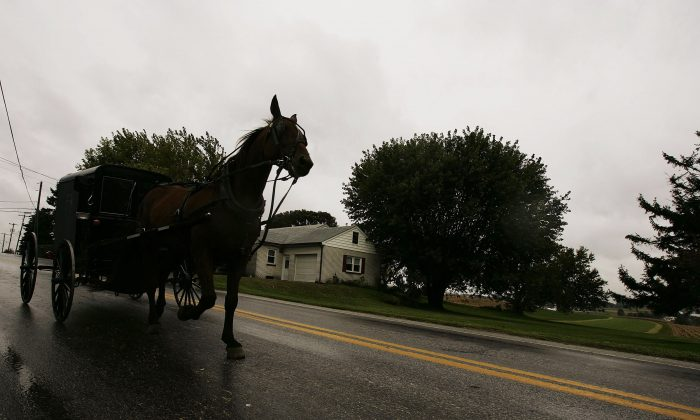 A horse draws an Amish carriage through Georgetown in Bart Township, Pennsylvania on October 6, 2006. (Photo by Chris Hondros/Getty Images)
