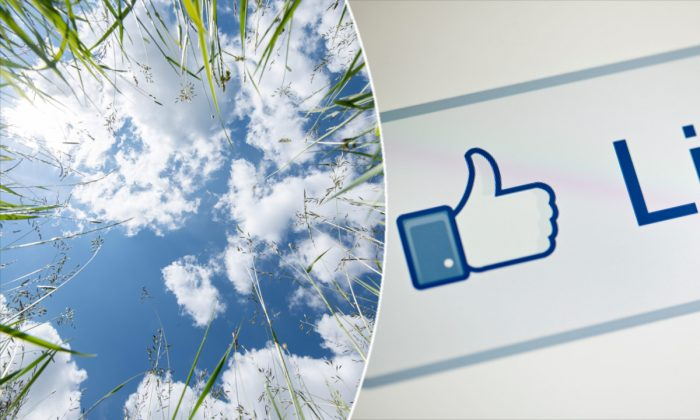 (L) Clouds from a meadow. (Silas Stein/AFP/Getty Images) | Facebook like button. (Brendan Smialowski/AFP/Getty Images)