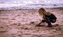 Girl on Spring Break Stumbles Upon Million-Year-Old Megalodon Shark Tooth