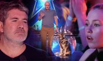 Police Dog Comes on BGT Stage, His Heroic Story Has Simon Cowell in Tears