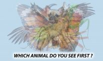 The First Animal You See in This Picture Will Reveal Hidden Aspects of Your Personality