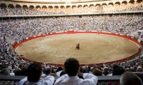 Bull Kills 60-Year-Old Assistant at Spanish Bullfighting Ring