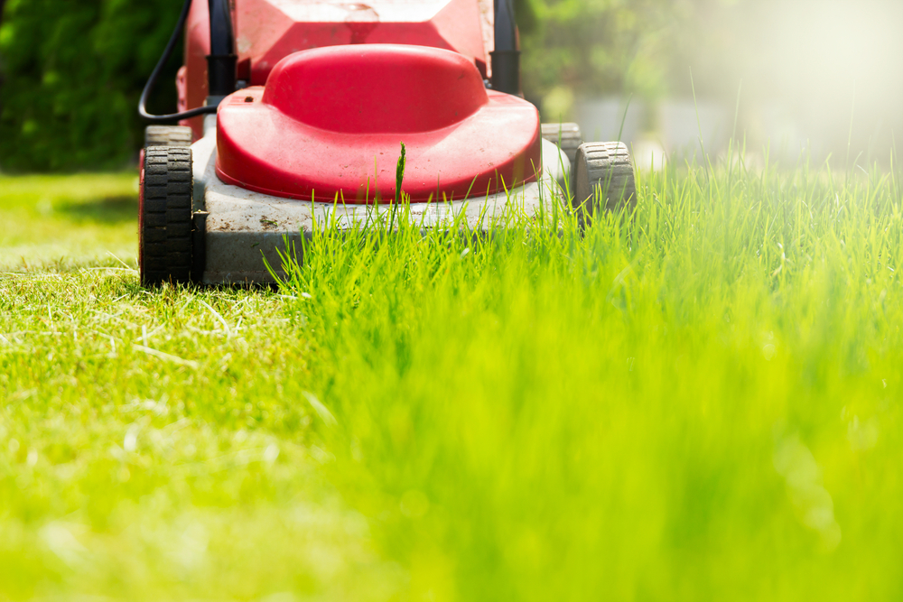 'Lazy' Man Watches As Wife Mows Lawn. When Neighbor Learns Why, He Posts It Online