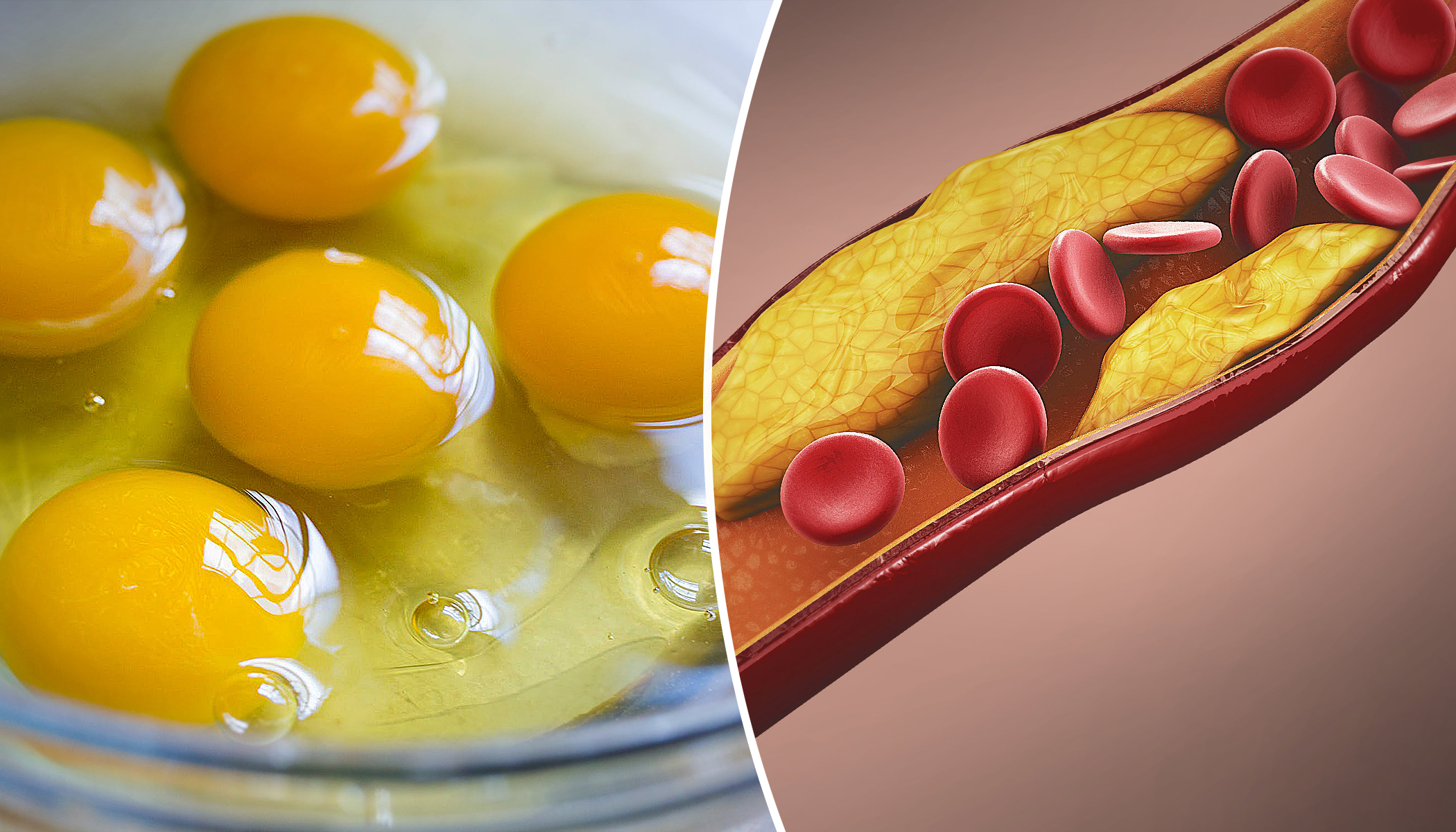 What Happens to Your Body If You Eat 2 Eggs a Day–Is It Really As BAD As They Say?